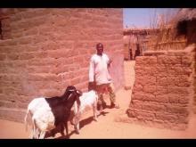 Embedded thumbnail for Ifer De Mokolo: Une Reponse  à l'insertion  Socio-Professionnelle des Jeunes  de L'extreme-Nord Cameroun