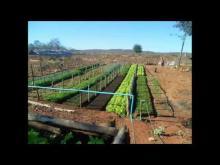 Embedded thumbnail for Escuela Familia Agrícola Haciendo Sueños Realidad