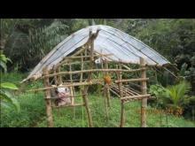 Embedded thumbnail for Les jeunes non scolarisés et l'agriculture