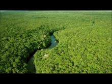 Embedded thumbnail for Cambios ecológicos y producción sostenible.