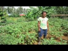 Embedded thumbnail for Organic Farming in The Philippines.